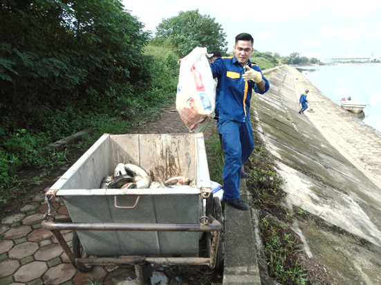 Cá chết hàng loạt được thu gom để chuyển đến nơi xử lý