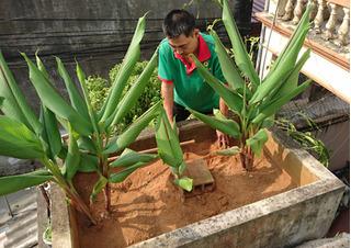 """Sống """"sát nách"""" trung tâm Hà Nội vẫn thèm nước sạch"""