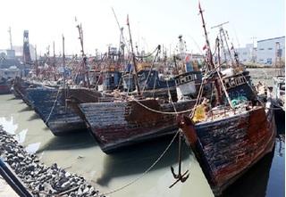 Tiếng súng vang lên khi tàu cá Trung Quốc ngang nhiên lượn lờ vào lãnh hải Hàn Quốc
