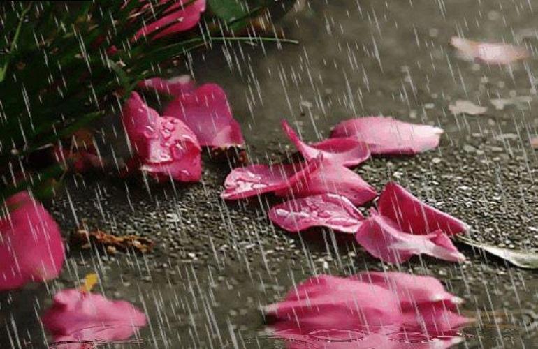 Dự báo thời tiết ngày mai, miền Trung có mưa lớn do áp thấp nhiệt đới