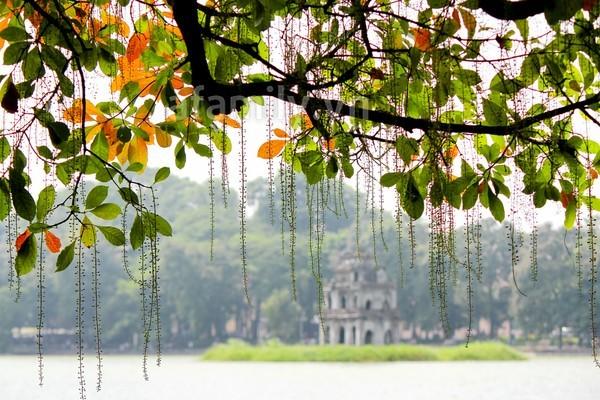 Dự báo thời tiết ngày mai, Hà Nội nắng đẹp và ấm áp