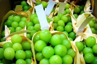 'Điểm mặt' 6 trái cây lạ, giá tiền triệu ồ ạt nhập về Việt Nam