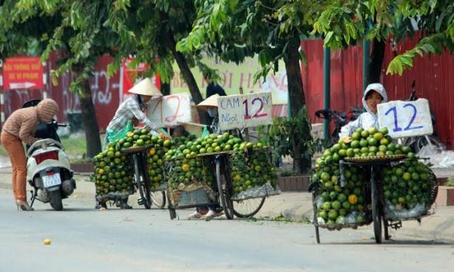 Cam Trung Quốc bày bán trà lan thị trường