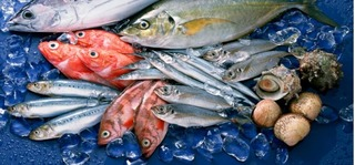 Mẹo chọn mua cá tươi ngon, không nhiễm độc cho các bà nội trợ