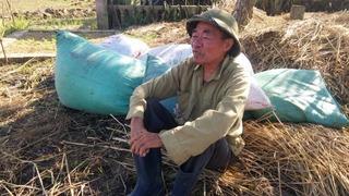 """Sự thật buốt lòng sau vụ hàng nghìn ngôi mộ từ Hà Nội đem """"vùi trộm"""" ở Thái Bình (Kỳ 1)"""