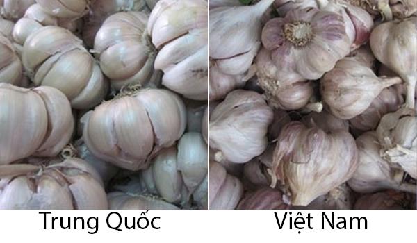 phân biệt rau củ Trung QUốc