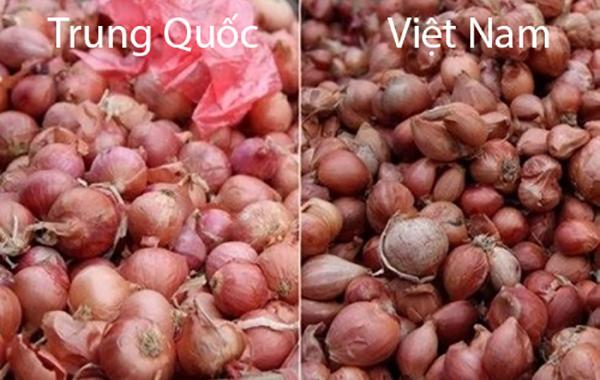 phân biệt rau củ Trung QUốc 2