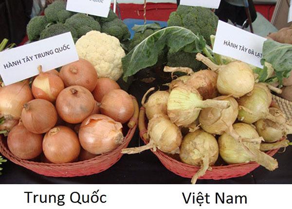 phân biệt rau củ Trung Quốc 6