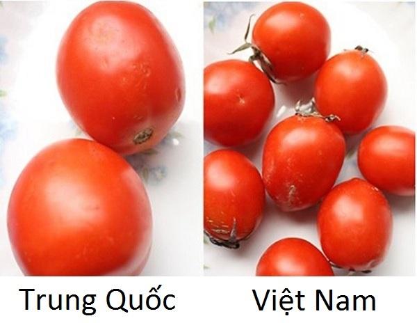 phân biệt rau củ Trung QUốc 9