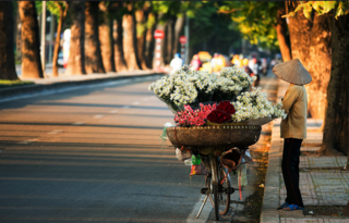 Dự báo thời tiết ngày mai 14/11: Hà Nội nắng ấm, gió nhẹ ngày đầu tuần