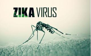 Báo động: Sài Gòn phát hiện thêm 8 ca nhiễm Zika trong 4 ngày