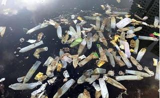 Bao cao su nổi trắng mặt hồ Linh Đàm: Nghi ngờ xe hút bể phốt đổ trộm rác?