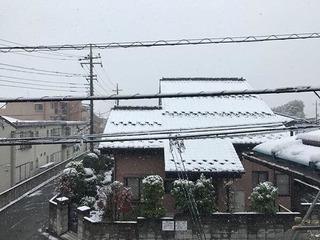 Du học sinh Việt tại Nhật trải lòng về trận tuyết bất thường sau 54 năm