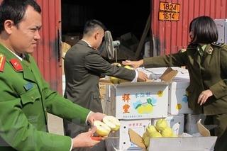 """Bắt 4 tấn hoa quả """"mập mờ"""" sắp sửa tuồn vào chợ đầu mối ở Hà Nội"""