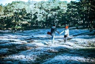 Chiêm ngưỡng cánh đồng tuyết trắng lãng mạn như phim Hàn ngay tại Việt Nam