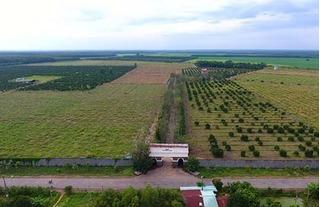 Vinamit chính thức được công nhận là các sản phẩm hữu cơ Organic
