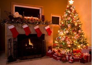 Nguồn gốc cây thông Noel vẫn mãi là điều bí ẩn