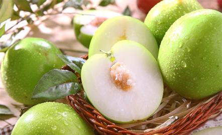 Táo xanh Phan Rang- Trái cây tươi Leafsie