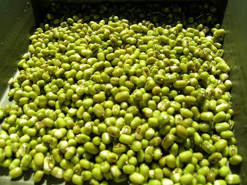 thực phẩm trung quốc đậu xanh