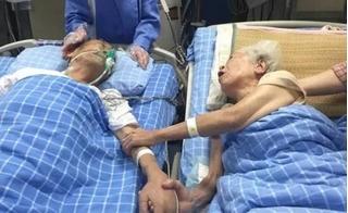 Ước muốn cuối cùng trước khi chết của cụ ông 92 tuổi khiến bạn rơi lệ