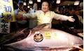 """Đại gia """"chơi trội"""" chi 14 tỷ mua cá ngừ vây xanh nặng hơn 2 tạ"""