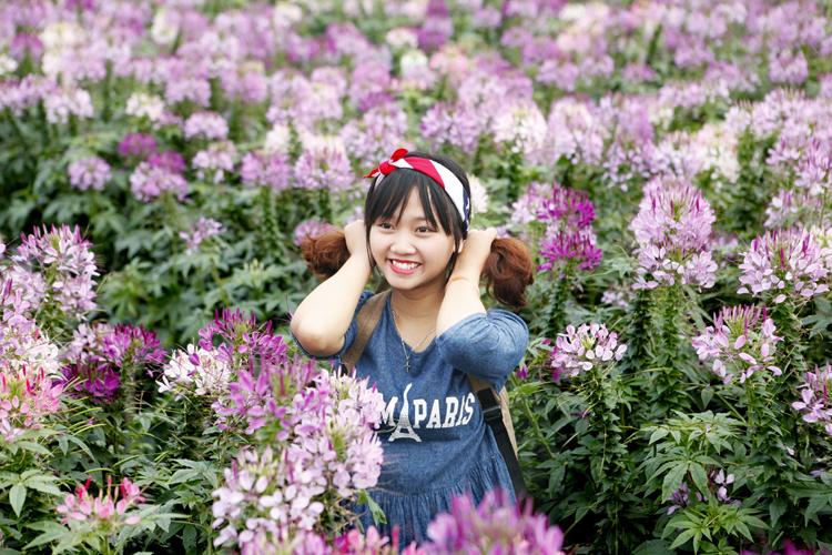 địa điểm chụp ảnh Tết đẹp ở Hà Nội 3