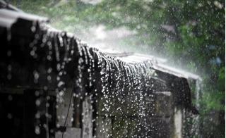 Dự báo thời tiết hôm nay 11/1: Hà Nội mưa rét dầm dề cả ngày