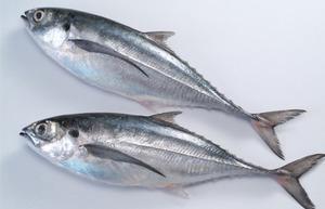 Hai cách giữ cá sống lâu hơn trước khi chế biến