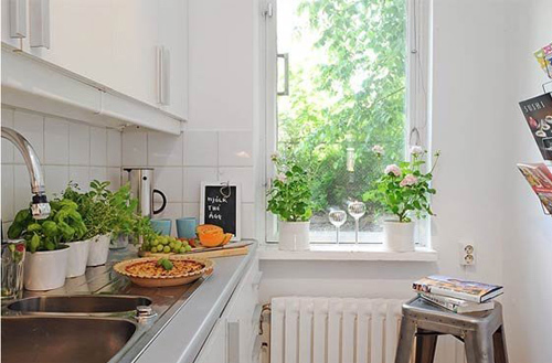 Không nên trồng hoa quá nhiều ở trong nhà