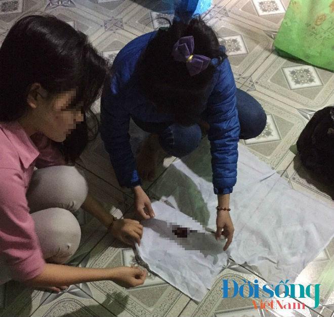 Sau mỗi đêm đi lượm nhặt, Tuấn và những thành viên trong nhóm lại kỳ công phân loại, vệ sinh cho những sinh linh vắn số