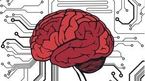 Quan hệ giữa bệnh tim với bệnh huyết quản não