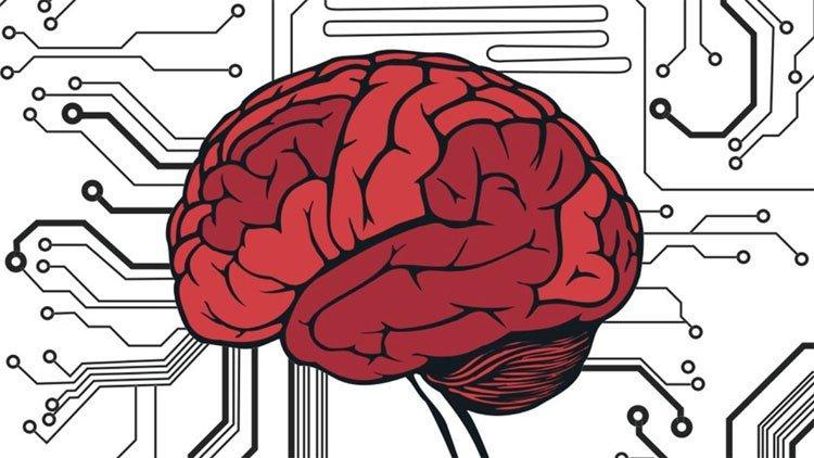 Bệnh tim dẫn tới bệnh huyết quản não