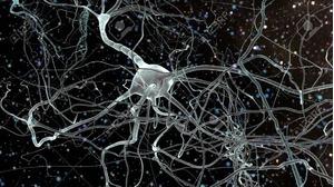 Phục hồi chết não là gì?