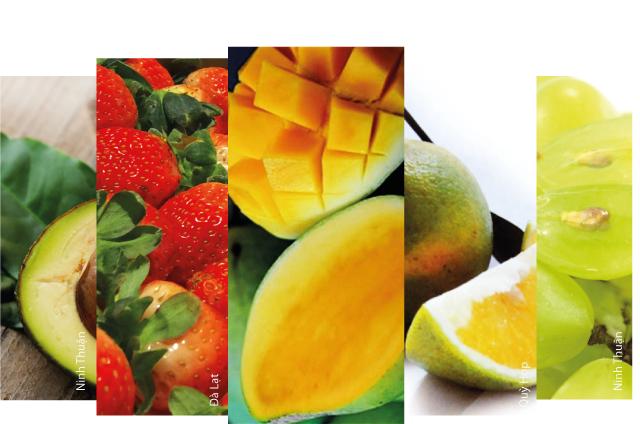 Chọn mua trái cây