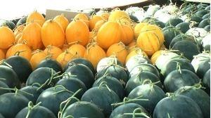 Cách chọn được một quả dưa hấu thơm ngon cho gia đình bạn