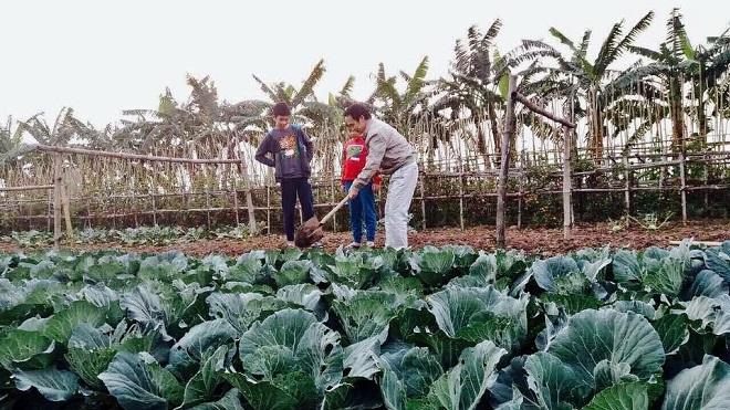 Chủ tịch FLC dạy con cách làm vườn 4