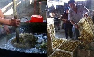 Bàng hoàng chứng kiến cách tiêu hủy vịt đực tàn bạo ở Trung Quốc