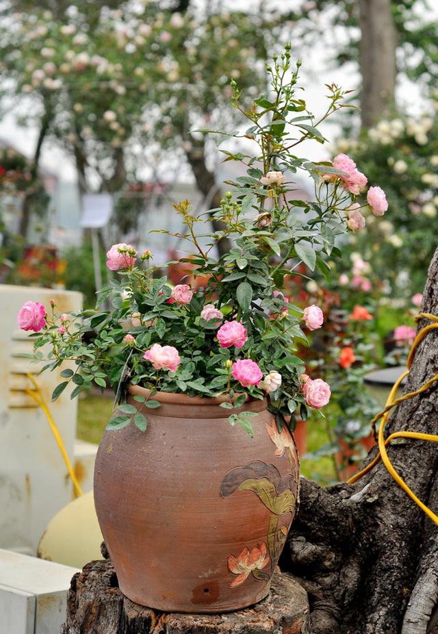 Lễ hội hoa hồng Bulgaria 17