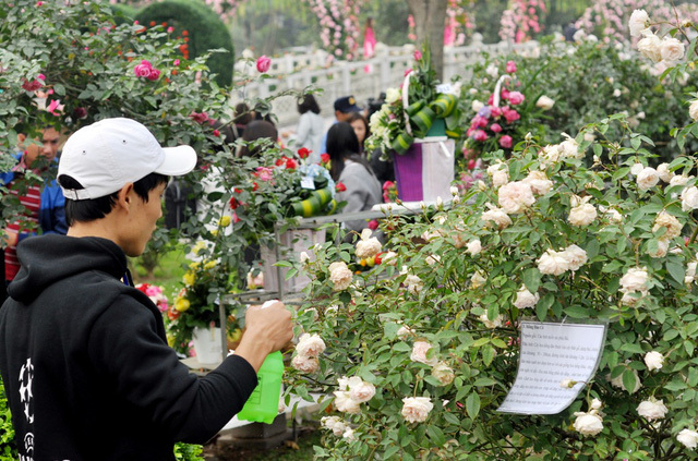 Lễ hội hoa hồng Bulgaria 20