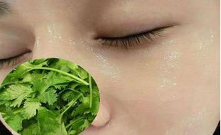 Chỉ mất một phút thoa nước rau mùi lên mặt theo cách này, vết nám tàn nhàng sẽ biến mất