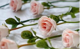 Gần 4 triệu đồng/bông, hoa hồng sứ vẫn cháy hàng ngày Quốc tế phụ nữ 8/3