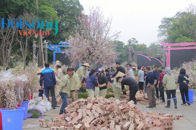 Lễ hội hoa anh đào Hà Nội 1