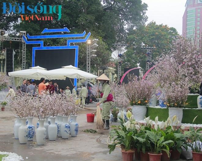 Lễ hội hoa anh đào Hà Nội 4