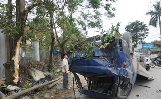 Nghệ An: Tài xế buồn ngủ, xe tải leo lên thân cây rồi lật ngửa