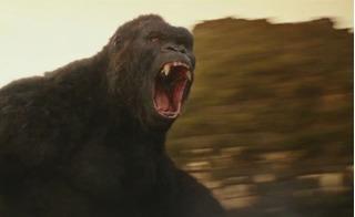 Dựng Kong ở khu vực Tượng đài Cảm tử: Tôi thấy có mùi thực dụng!