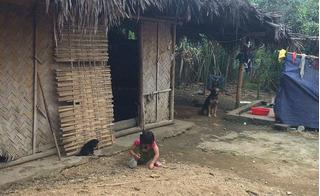 Bé gái 4 tuổi bị xâm hại ở Phú Thọ: Kẻ tình nghi bị tâm thần, hay lên đồi chè nhảy múa?