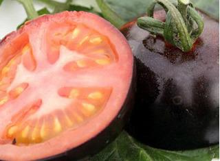 5 siêu quả đắt đỏ trồng thành công trên đất Việt