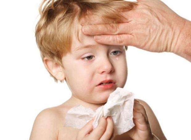 tỏi chữa bệnh cho trẻ1