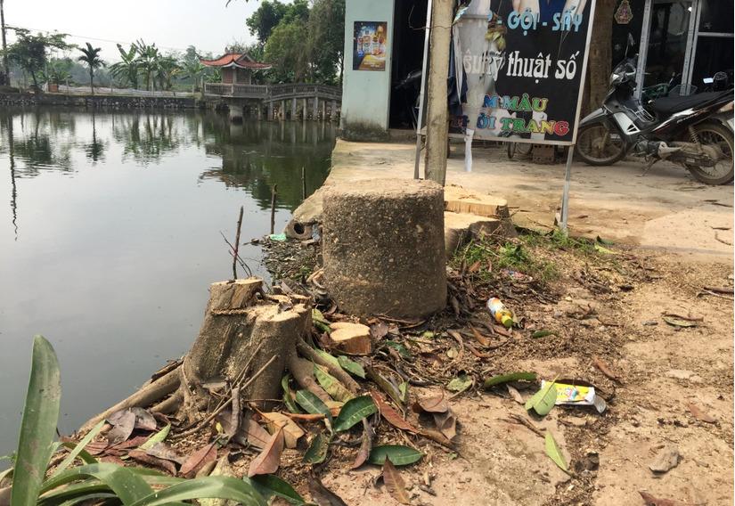 Chặt cây xanh vỉa hè Hà Nội 10