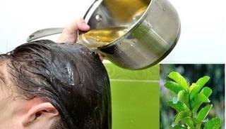Dùng lá ổi theo cách này, tóc thưa rụng đến mấy cũng đen dày mềm mượt sau 1 tháng